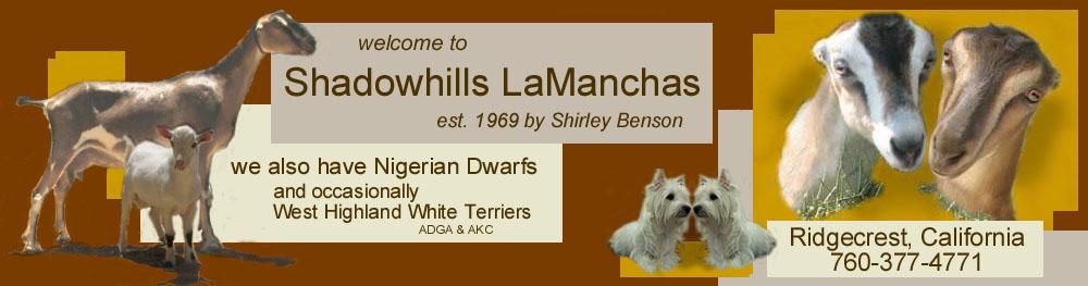 Shadow Hill LaMancha Dairy Goats Home Page